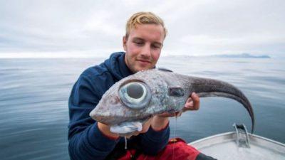 नॉर्वेजियन / 19 वर्षीय गाइड ने समुद्र से बड़ी आंखों वाले डायनासोर मछली पकड़ी, तस्वीरें वायरल