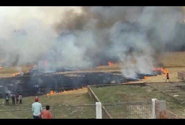 स्लग-गन्ने के खेत में लगी आग